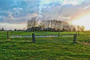 Opkoopregeling voor veehouderijbedrijven van start in Provincie Drenthe