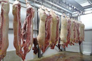 Nederlandse varkenshouder verdient €12.000 meer per maand dan Belgische collega